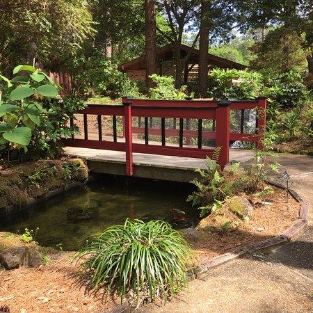 Mobile Botanical Gardens 사진