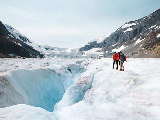 Alberta, Canada: The Columbia Icefield.
