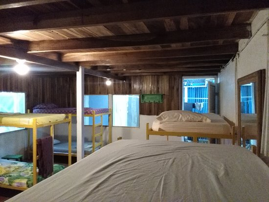Cocles, Costa Rica: dorm with 6 bunk beds