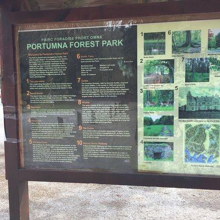 Portumna Forest Park : photo0.jpg