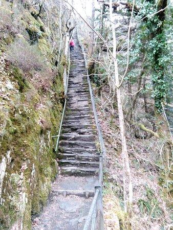 Foto Devil's Bridge (Pontarfynach)