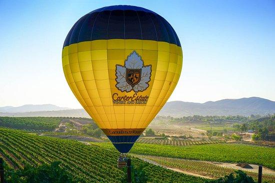 Temecula, CA: Carter Estate Hot Air Balloons