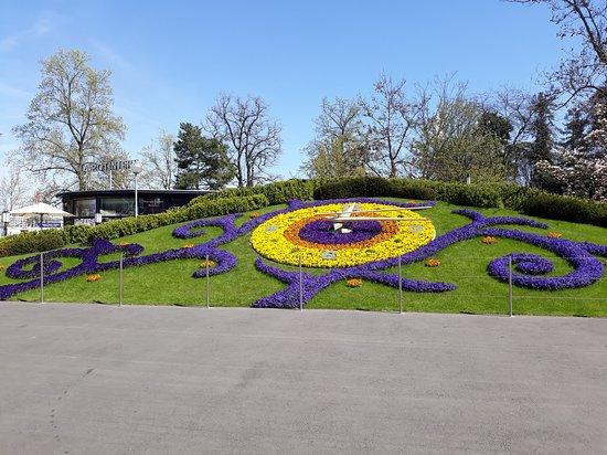 Flower Clock: Still amazing