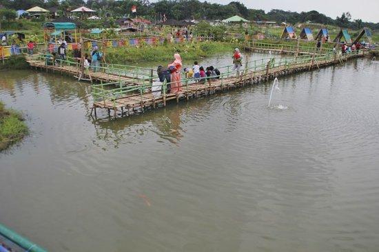 Cikarang, إندونيسيا: Kolam Ikan Taman Limo jatiwangi