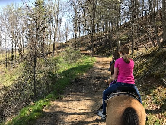 Riding up the mountain - Picture of Sandy Bottom Trail Rides