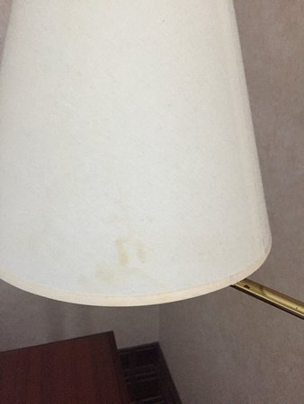 Clarks Summit, PA: Dirt on all the lamp shades