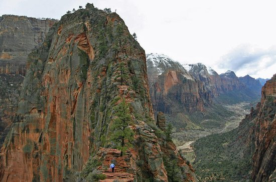 Full-Day Tour to Zion National Park...