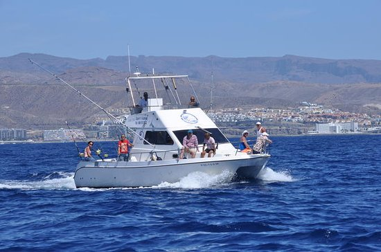 Full-Day Sport Fishing at Puerto Rico