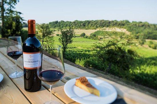 Tour do vinho de Bordeaux em St...
