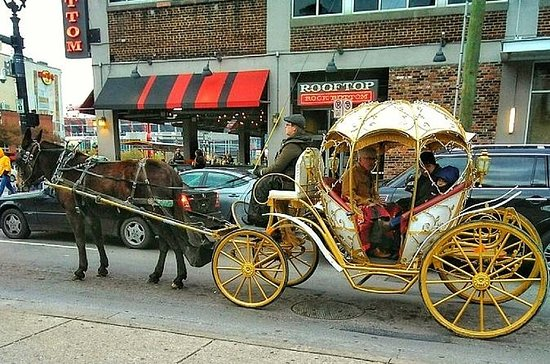 Horse-Drawn Carriage Ride