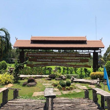 Surin, Thailand: photo0.jpg