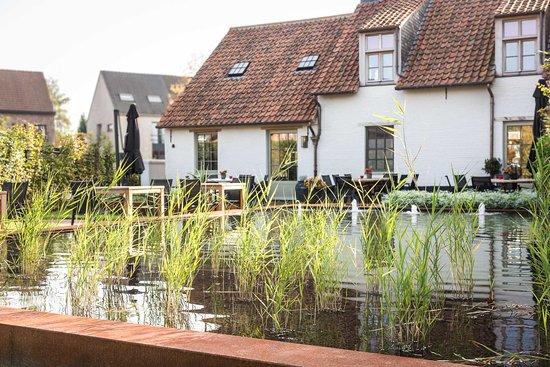 Zoersel, Belgien: Pond in the back