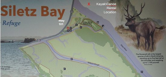 Lincoln City, OR: Kayak/Canoe Tours Rental is Located across the Siletz River from the Federal Wildlife Refuge