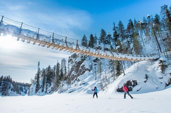 Suomussalmi, Finland: Skiing under the hanging bridge of canyon lake Julma-Ölkky. © Metsähallitus