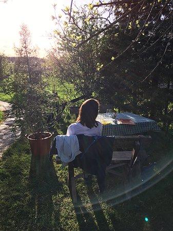 Fertorakos, المجر: im Garten