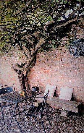 Relais Alcova del Doge: Our garden