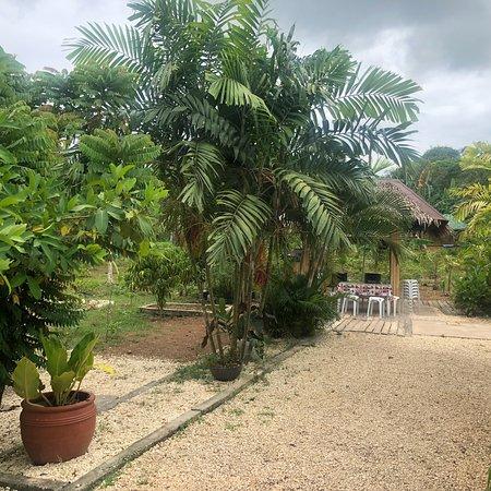 Dauis, Philippines: photo6.jpg