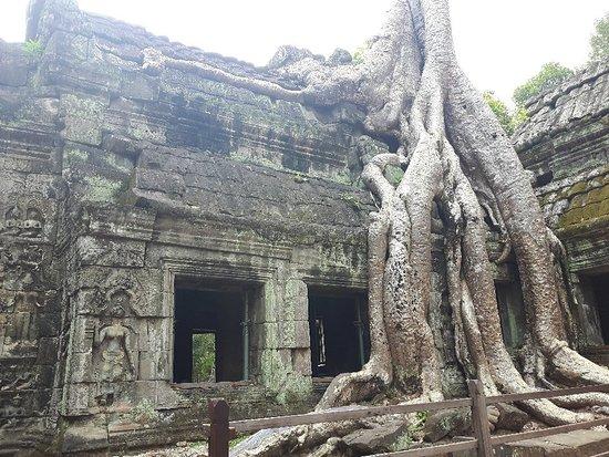 Bilde fra Thy Tuk Tuk & Tours