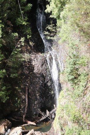 Waratah, Australia: I enjoyed watching that fall