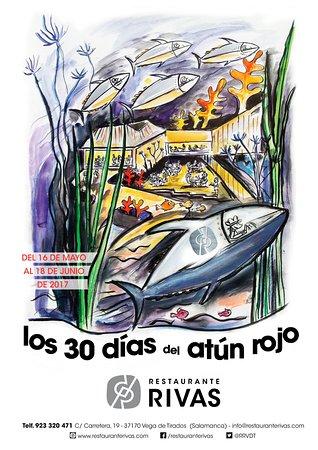 Cartel 2017. Los 30 días del atún rojo.