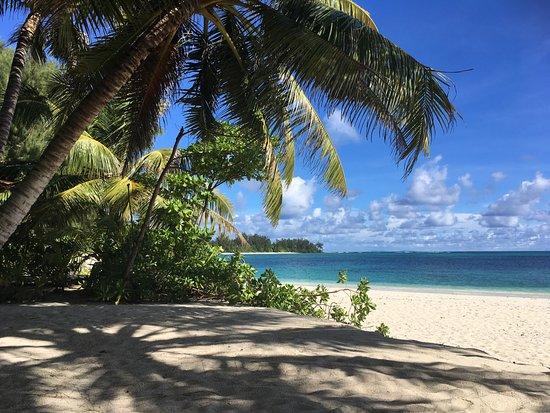 Denis Island Picture
