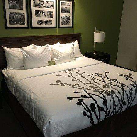 Sleep Inn & Suites: photo4.jpg