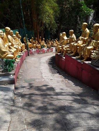 Ten Thousand Buddhas Monastery (Man Fat Sze) Photo