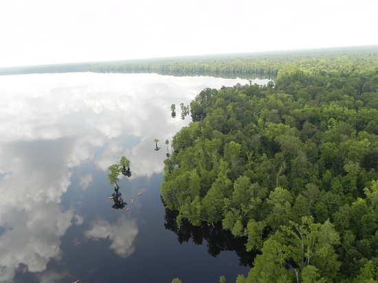 Suffolk, VA: An aerial view of the Great Dismal Swamp National Wildlife Refuge