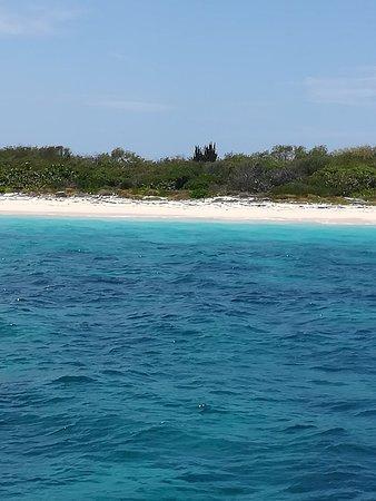 Isla Catalina: Catalina et fleuve chavogne avec lookéa. Journée magnifique île paradisiaque  banc de poisson co