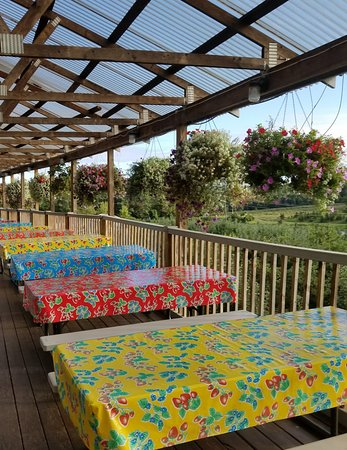 South Glastonbury, CT: Our trademark fruity tablecloths