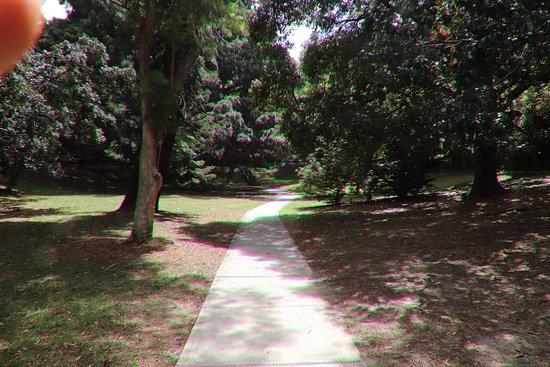 Watt Park