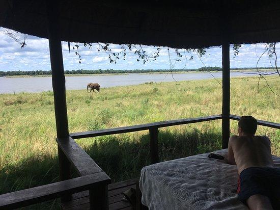 Lower Zambezi National Park Photo