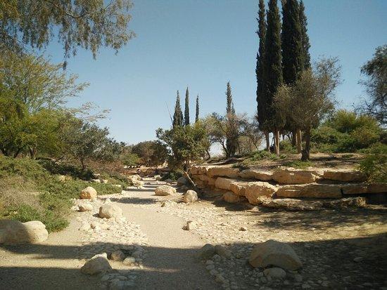 Ben Gurion Tomb: IMG_20180419_152533_large.jpg