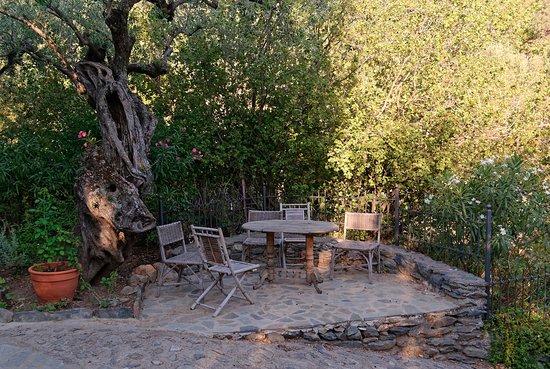 Τυρός, Ελλάδα: Chilling out point, garden
