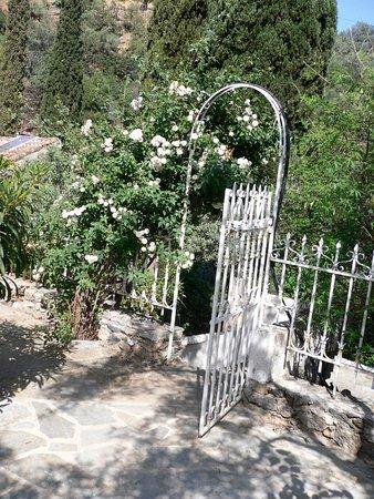 Τυρός, Ελλάδα: garden