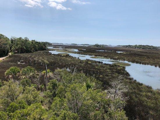 Withlacoochee Gulf Preserve Εικόνα
