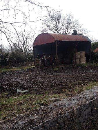 Cooper's Hill Equine : Terreno de uma casa da estrada