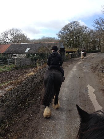 Cooper's Hill Equine : Estrada rural com as casas