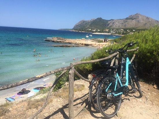 Sun Cycling Rent a Bike