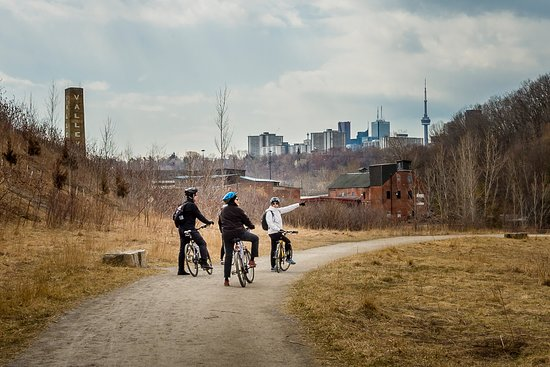 Pedal Toronto