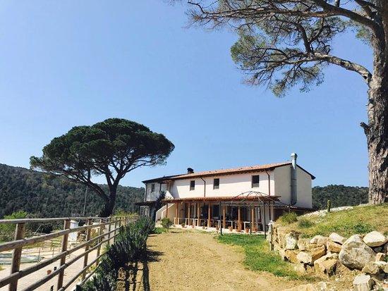 Quercianella, Italien: Agriturismo La Mignola