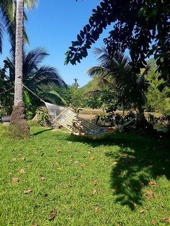 Yelapa Oasis: front yard