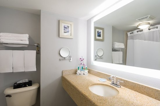 Holiday Inn Express Hotel & Suites Easton: Guest room amenity