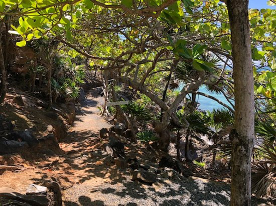 Paya Bay Resort: Paya Bay zen path