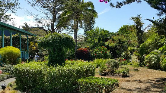 San Rafael de Escazu, Costa Rica: Beautiful B&B with great host.