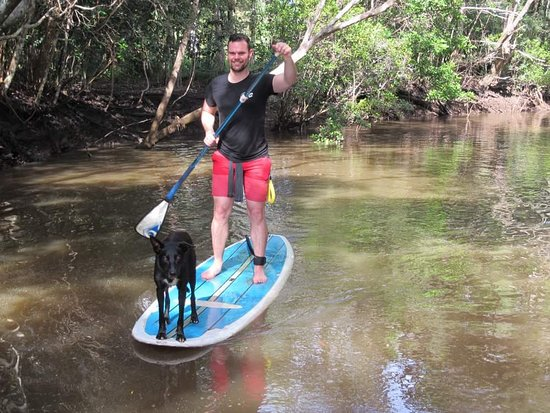 Byron Stand Up Paddle Photo