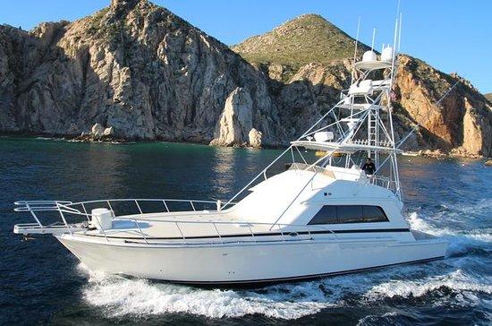 Cabo San Lucas - Fishing Charter - 60...