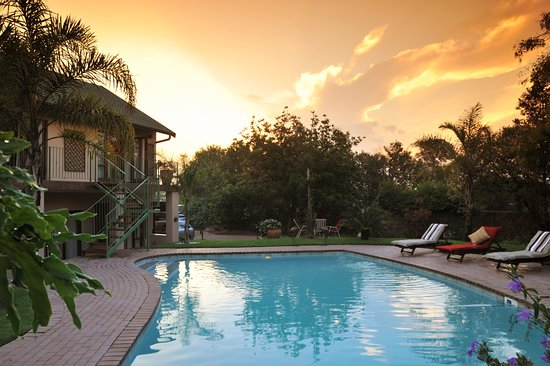Pool - Picture of Claires of Sandton - Tripadvisor