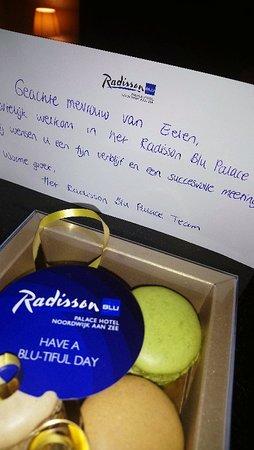 Radisson Blu Palace Hotel, Noordwijk Aan Zee ภาพถ่าย