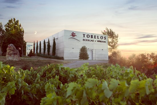 Brinas, Spain: Entrada a Bodegas Tobelos